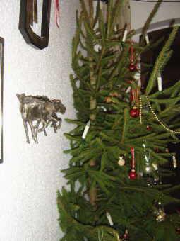 kaukasen bl ttle rund um den hirtenhund weihnachtsbaum. Black Bedroom Furniture Sets. Home Design Ideas